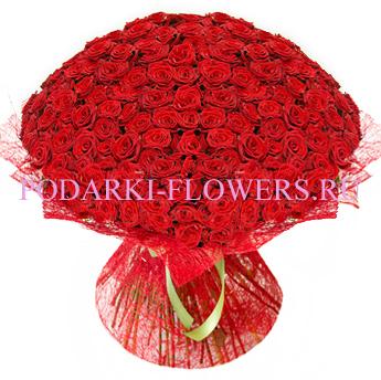 Букет роз «Утонченный вкус» 101 шт./151 шт./201 шт.