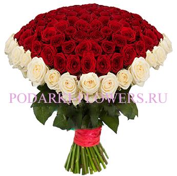 Букет роз «Солнечное настроение» 101 шт./151 шт./201 шт.