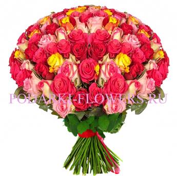 Букет роз «Истинная красота» 101 шт./151 шт./201 шт.