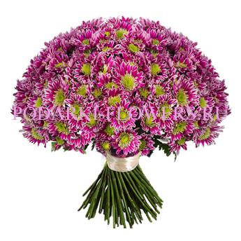 Букет роз «Нежный аромат» 51 шт./ 101 шт.