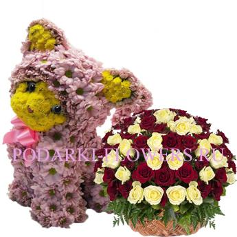Кошка из цветов + корзина из цветов
