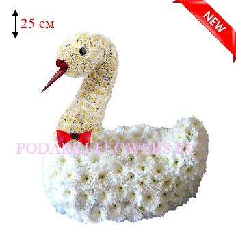 Лебедь из живых цветов