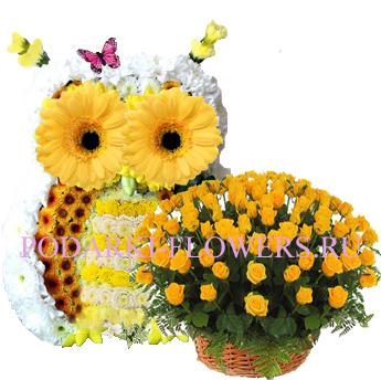 Сова из цветов + корзина из цветов